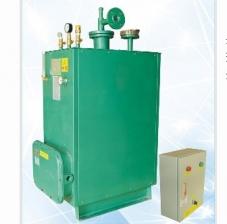 CPEX50kg气化炉 中邦气化炉 台湾日本强制气化炉